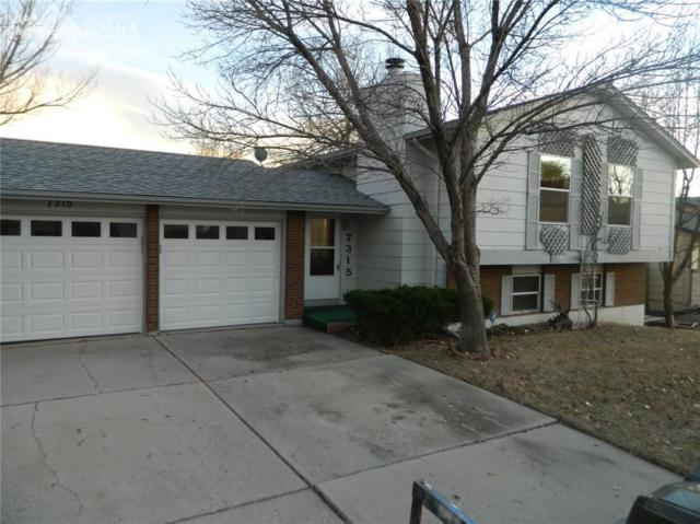7315 Painted Rock Drive, Colorado Springs, CO 80911 (#6494612) :: 8z Real Estate
