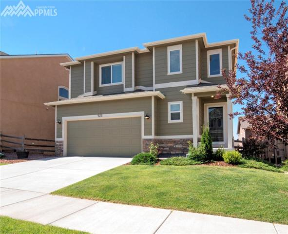923 Fire Rock Place, Colorado Springs, CO 80921 (#6495301) :: 8z Real Estate