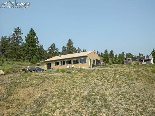 853 Fitzsimmons Drive, Hartsel, CO 80449 (#6495548) :: The Kibler Group