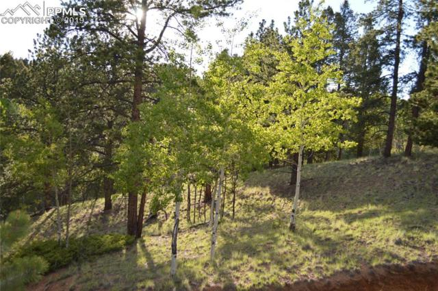 67 and 131 Lost Lake Circle, Divide, CO 80814 (#6495972) :: Perfect Properties powered by HomeTrackR