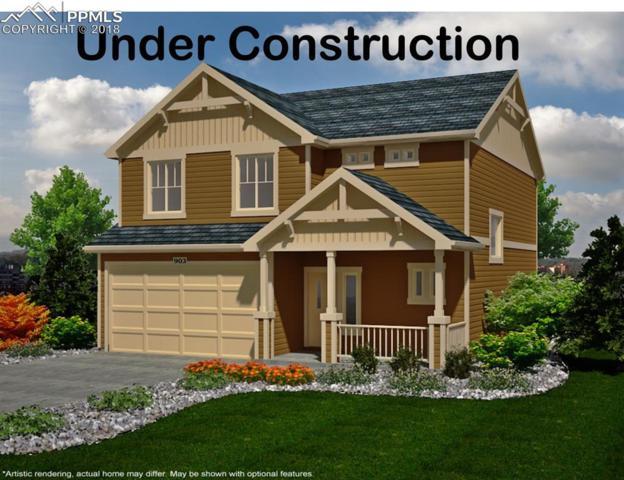 6887 Backcountry Loop, Colorado Springs, CO 80927 (#6499186) :: 8z Real Estate