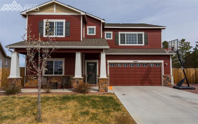 3894 Saguaro Circle, Colorado Springs, CO 80925 (#6499864) :: Jason Daniels & Associates at RE/MAX Millennium