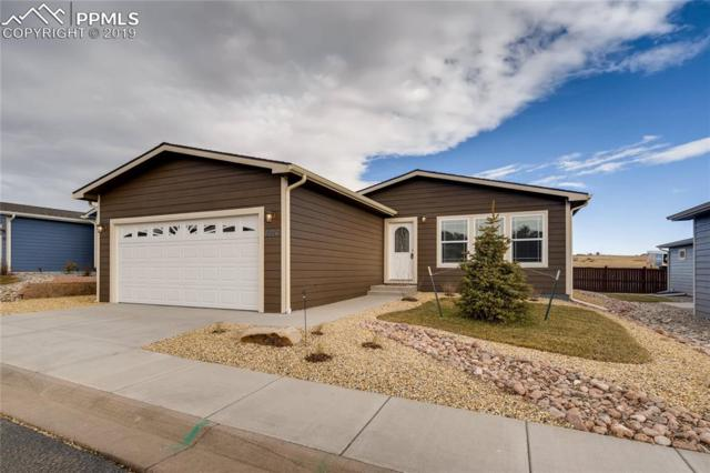 4479 Blue Grouse Point, Colorado Springs, CO 80922 (#6503168) :: Action Team Realty