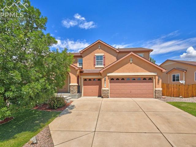 750 Airman Lane, Colorado Springs, CO 80921 (#6503885) :: The Peak Properties Group