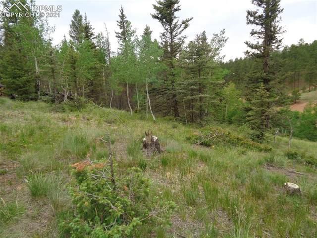 87 Chalk Creek Trail, Florissant, CO 80816 (#6509247) :: Action Team Realty