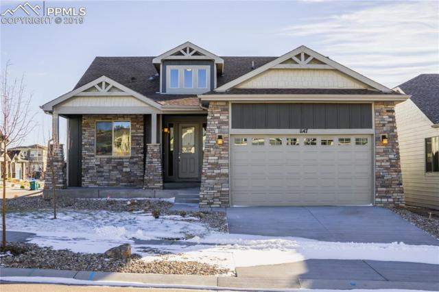 1147 Seabiscuit Drive, Colorado Springs, CO 80921 (#6510370) :: The Kibler Group