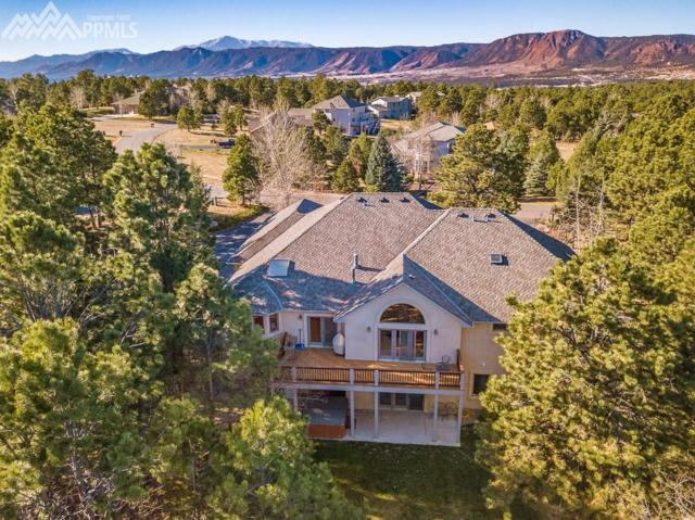 705 Winding Hills Road, Monument, CO 80132 (#6510578) :: 8z Real Estate