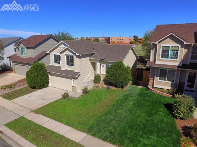 3553 Heather Glen Drive, Colorado Springs, CO 80922 (#6513863) :: 8z Real Estate