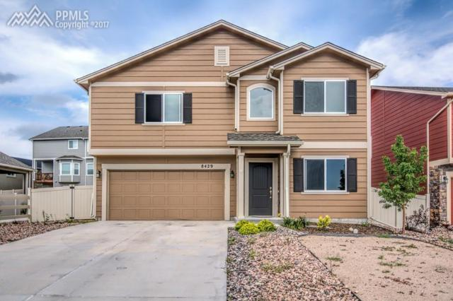 8429 Needle Drop Court, Colorado Springs, CO 80908 (#6515790) :: 8z Real Estate