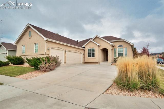 8413 Roaring Fork Drive, Colorado Springs, CO 80924 (#6521411) :: The Treasure Davis Team