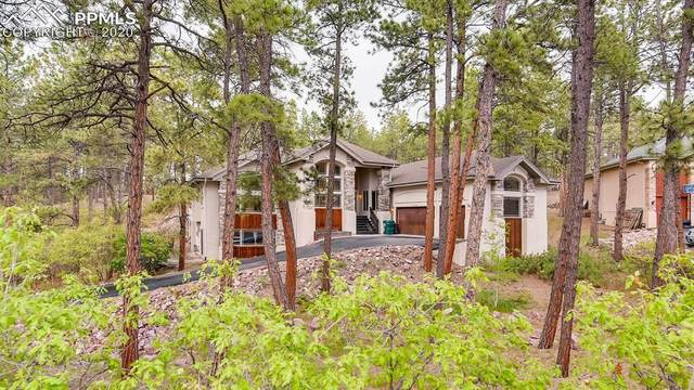 1080 Longspur Lane, Colorado Springs, CO 80921 (#6524382) :: Action Team Realty