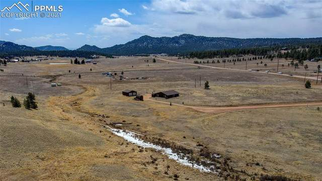 315 Empire Road, Florissant, CO 80816 (#6526866) :: The Treasure Davis Team | eXp Realty