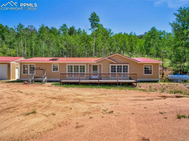 64 Grey Eagle Way, Cripple Creek, CO 80813 (#6529828) :: The Treasure Davis Team