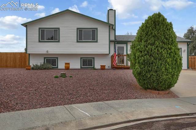 113 Butter Churn Court, Fountain, CO 80817 (#6530021) :: Finch & Gable Real Estate Co.