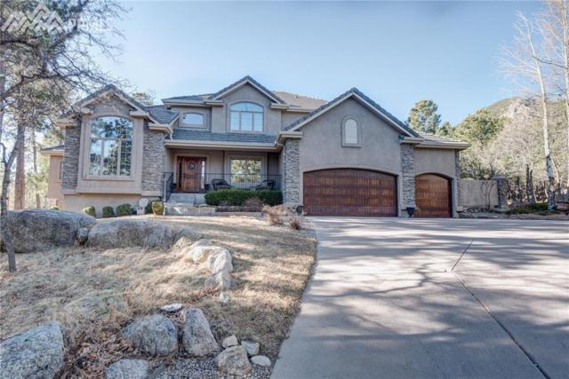 583 Silver Oak Grove, Colorado Springs, CO 80906 (#6531460) :: Action Team Realty