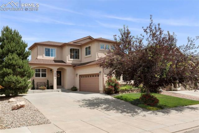 7730 Manston Drive, Colorado Springs, CO 80920 (#6531511) :: Tommy Daly Home Team