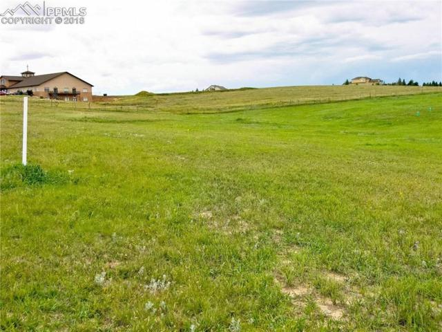 20201 Royal Troon Drive, Monument, CO 80132 (#6534904) :: Harling Real Estate