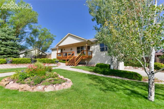 255 Mcshane Place, Monument, CO 80132 (#6535955) :: Fisk Team, RE/MAX Properties, Inc.