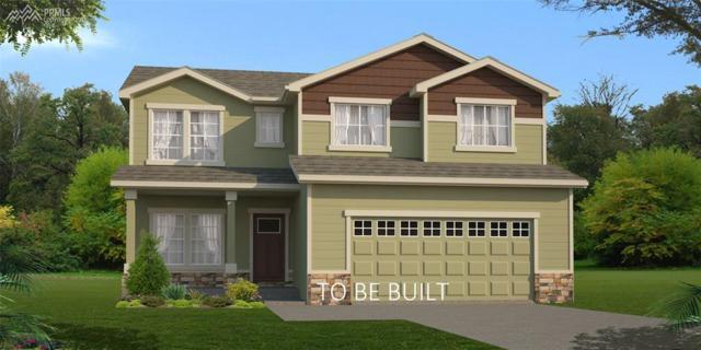 5289 Adana Drive, Colorado Springs, CO 80916 (#6537448) :: 8z Real Estate