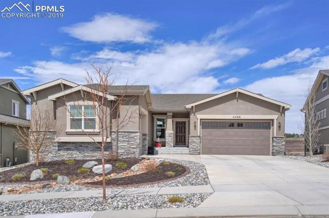 4458 Outlook Ridge Trail, Colorado Springs, CO 80924 (#6538334) :: The Treasure Davis Team