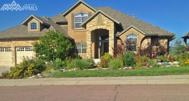 16656 Curled Oak Drive, Monument, CO 80132 (#6539458) :: Group 46:10 Colorado Springs