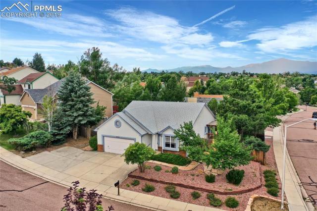 6380 Bestview Way, Colorado Springs, CO 80918 (#6539792) :: The Daniels Team