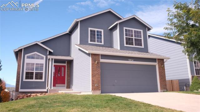 3954 Pronghorn Meadows Circle, Colorado Springs, CO 80922 (#6545843) :: The Treasure Davis Team