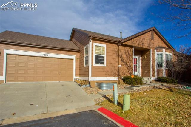 7230 Blue Pond Point, Colorado Springs, CO 80922 (#6545991) :: Action Team Realty