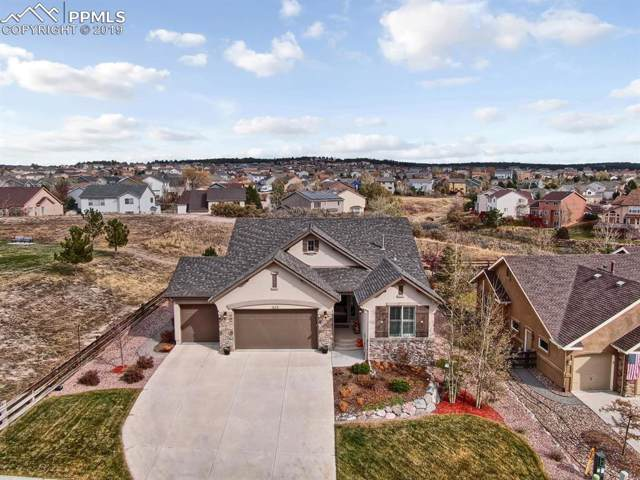 579 Burke Hollow Drive, Monument, CO 80132 (#6550797) :: CC Signature Group