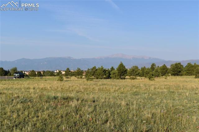 7626 Rannoch Moor Way, Colorado Springs, CO 80908 (#6551348) :: The Treasure Davis Team