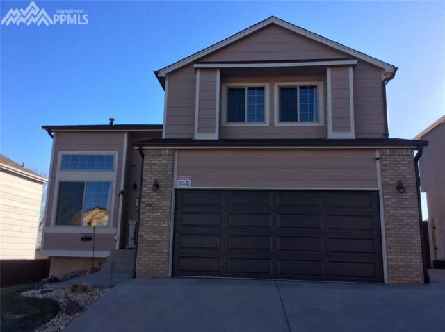 676 Welsh Circle, Colorado Springs, CO 80916 (#6552145) :: 8z Real Estate