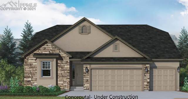 908 Graywoods Terrace, Monument, CO 80132 (#6552967) :: Tommy Daly Home Team
