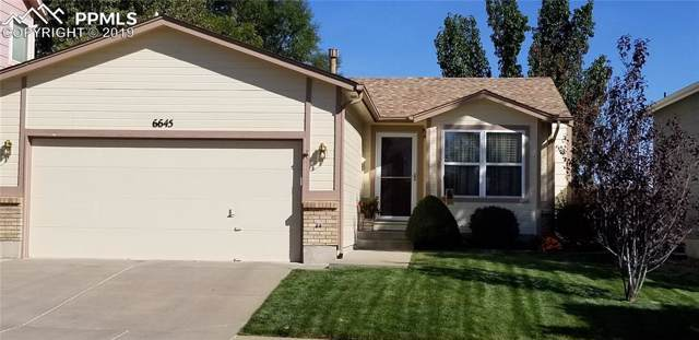 6645 Bear Tooth Drive, Colorado Springs, CO 80923 (#6554842) :: The Hunstiger Team
