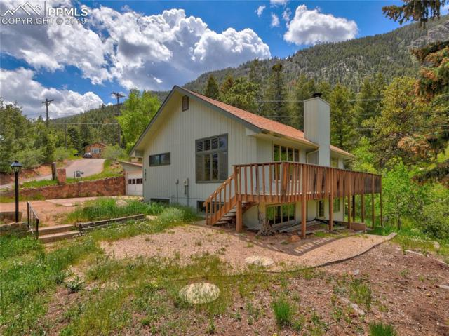 9835 Mesa Road, Cascade, CO 80809 (#6556950) :: The Peak Properties Group