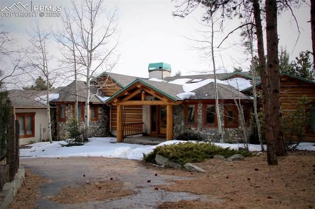 24043 Eagle Cliff Trail, Conifer, CO 80433 (#6560769) :: Finch & Gable Real Estate Co.