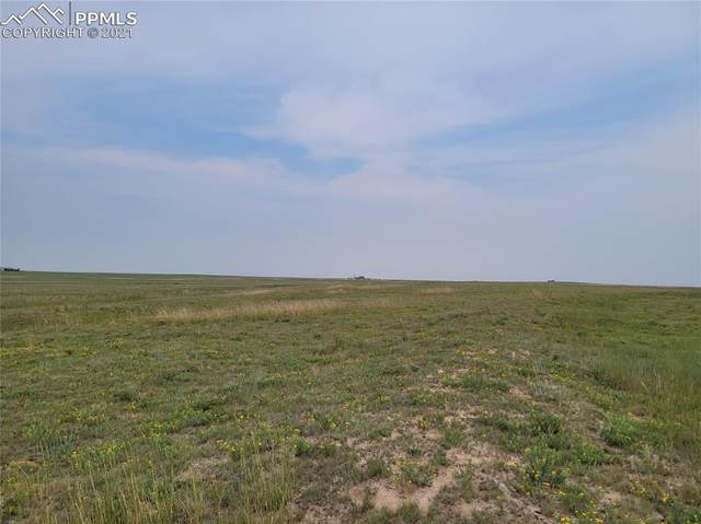 37045-2 Highway 94 Highway, Yoder, CO 80864 (#6561524) :: Tommy Daly Home Team