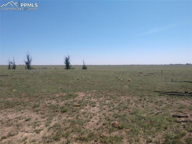 0 Mulberry Road, Yoder, CO 80864 (#6562009) :: 8z Real Estate