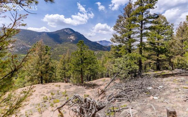 339 Eagle Mountain Road, Manitou Springs, CO 80829 (#6564851) :: Fisk Team, RE/MAX Properties, Inc.