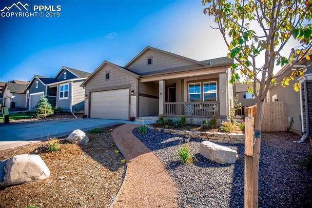 2571 Hannah Ridge Drive, Colorado Springs, CO 80922 (#6569262) :: Action Team Realty