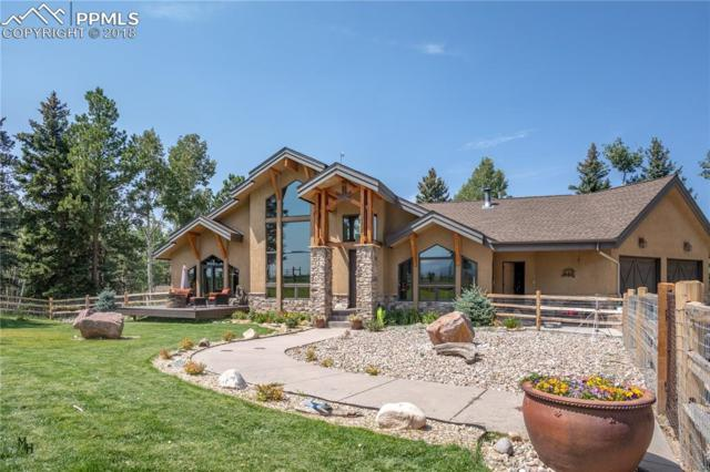 1681 County 5 Road, Divide, CO 80814 (#6579067) :: Fisk Team, RE/MAX Properties, Inc.
