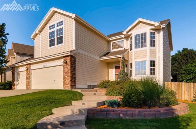 6577 Barrel Race Drive, Colorado Springs, CO 80923 (#6579218) :: 8z Real Estate