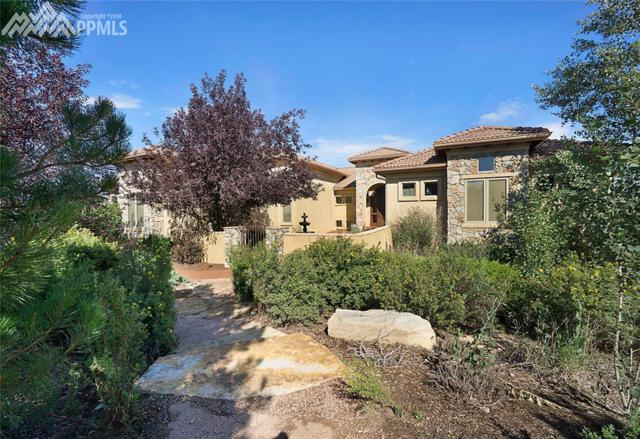 19124 Baskerville Way, Monument, CO 80132 (#6579775) :: The Treasure Davis Team