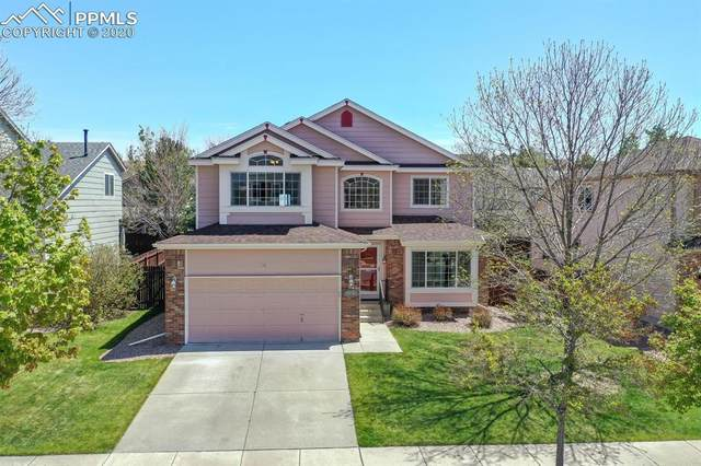 3575 Pony Tracks Drive, Colorado Springs, CO 80922 (#6581451) :: CC Signature Group