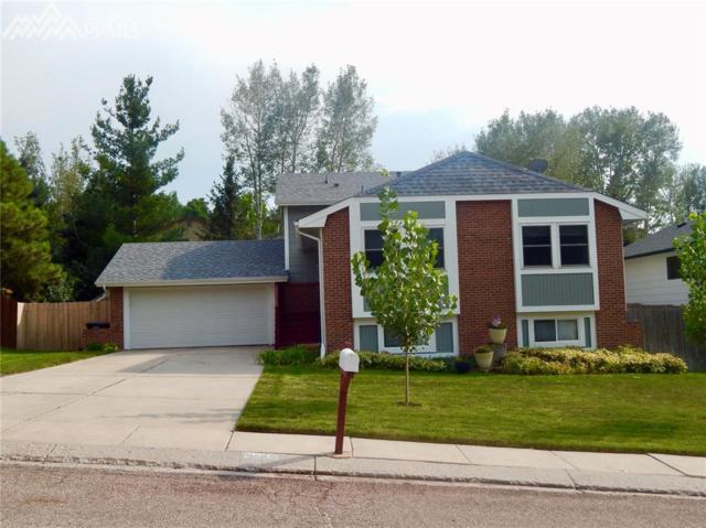 5489 E Old Farm Circle, Colorado Springs, CO 80917 (#6582499) :: 8z Real Estate