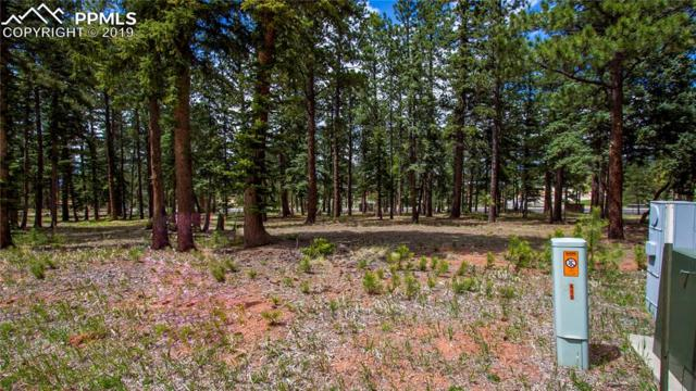 610 Chipmunk Drive, Woodland Park, CO 80863 (#6582789) :: The Dixon Group