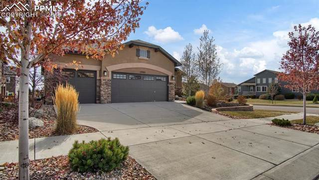 5905 Brave Eagle Drive, Colorado Springs, CO 80924 (#6584213) :: Action Team Realty