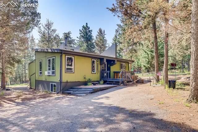 123 Saddle Drive, Woodland Park, CO 80863 (#6591234) :: The Dixon Group