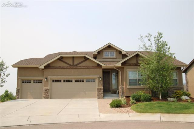 2123 Turnbull Drive, Colorado Springs, CO 80921 (#6591778) :: Jason Daniels & Associates at RE/MAX Millennium