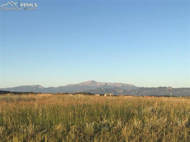 4358 Silver Nell Drive, Colorado Springs, CO 80908 (#6597743) :: Jason Daniels & Associates at RE/MAX Millennium