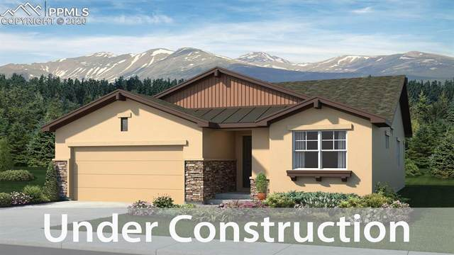16435 Corkbark Terrace, Monument, CO 80132 (#6597914) :: Tommy Daly Home Team